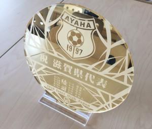 サッカー関係者必見!!サッカー大会の記念品アクリル製記念盾「チャンピオンボール」